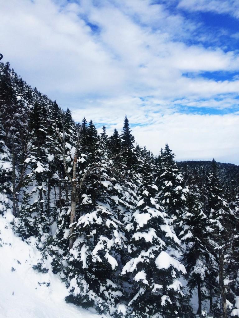 Sugarbush, Vermont